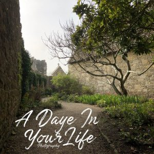 A Daye In Your Life Photography